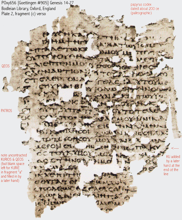 codex fm 100